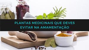 Plantas medicinais que deves evitar na amamentação