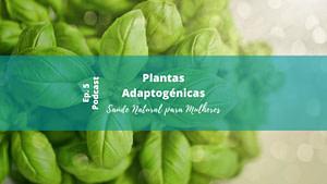 plantas adaptogénicas